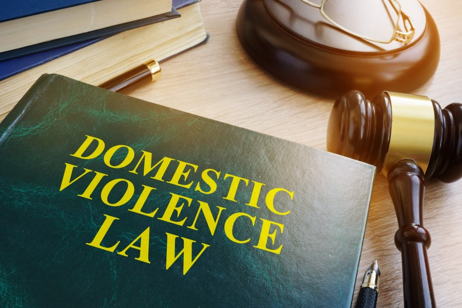 Domestic Abuse Law Book
